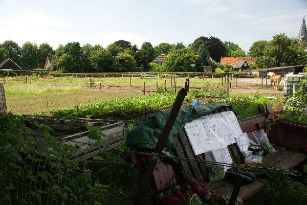 Fields adjacent to the farmhouse