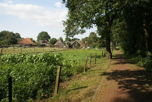 Bicycle path alongside ''Under the Oaks''