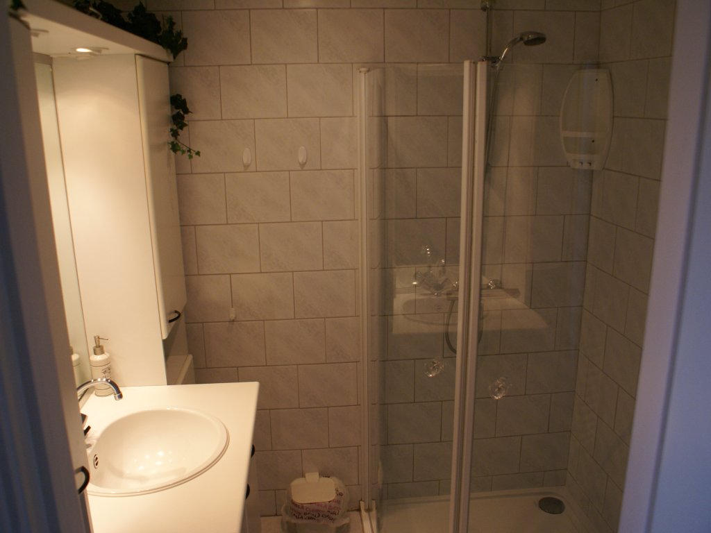 Bathroom with a walk-in shower cubicle