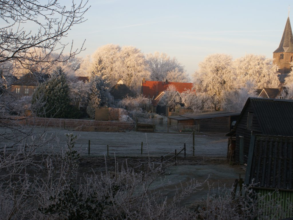 Frost over the meadows next to ''Under the Oaks''