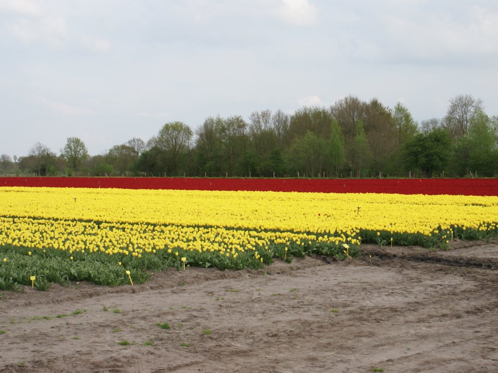 Landbouw in omgeving